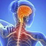 Definición de Esclerosis lateral amiotrófica